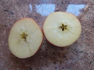 Selbst ein Apfel birgt ein ein kleines Wunder in sich!