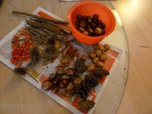 Unsere 'Herbstschätze' - Hagebutten, kleine Stöcke, Kastanien, Disteln, Walnüsse, Tannenzapfen